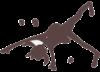 200x144-icon-cartwheel-girl
